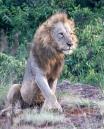 Kenya 2019 Low-070119-1212